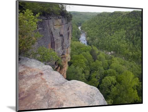 Big South Fork National River and Recreation Area, Tennessee, USA-Clint Farlinger-Mounted Photographic Print
