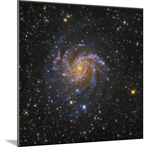 NGC 6946, Spiral Galaxy in Cepheus also known as the Fireworks Galaxy-Robert Gendler-Mounted Photographic Print