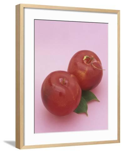 Red Plums (Prunus Domestica)-Wally Eberhart-Framed Art Print