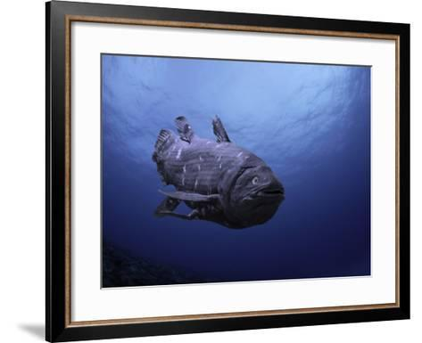 Digital Illustration of Coelacanth That Was Believed to Have Become Extinct-David Fleetham-Framed Art Print