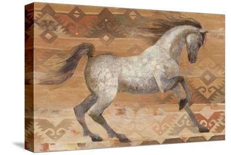 Grand Entrance Southwest-Albena Hristova-Stretched Canvas Print