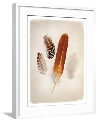 Feather Group I-Debra Van Swearingen-Framed Art Print