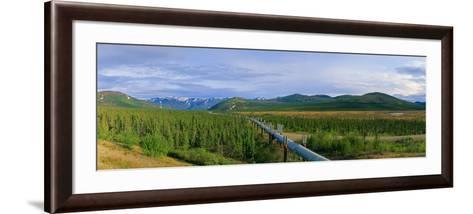 Trans Alaska Oil Pipeline Just South of the Brooks Range-Paul Andrew Lawrence-Framed Art Print