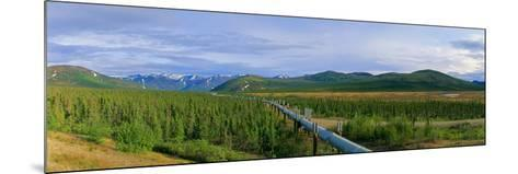 Trans Alaska Oil Pipeline Just South of the Brooks Range-Paul Andrew Lawrence-Mounted Photographic Print