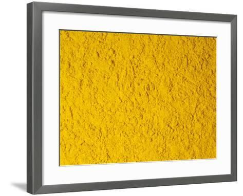 Dried Ground Tumeric Roots for Use as a Spice, Herb, or Flavoring (Curcuma Longa)-Ken Lucas-Framed Art Print