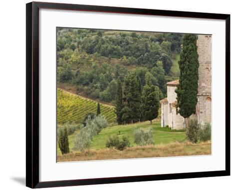Vineyard and St. Antimo Abbey, Near Montalcino, Italy, Tuscany-Adam Jones-Framed Art Print