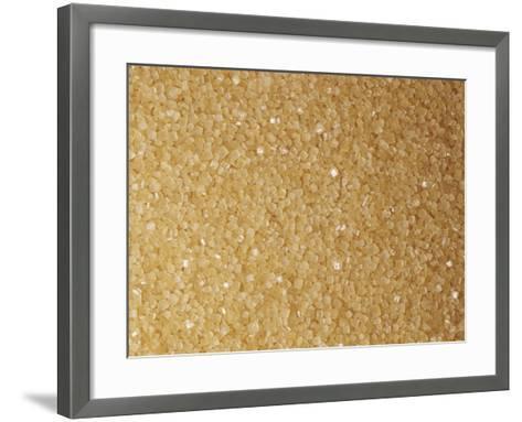Brown and Coarse Turbinado Sugar Crystals from Sugarcane (Saccharum Officinarum)-Ken Lucas-Framed Art Print