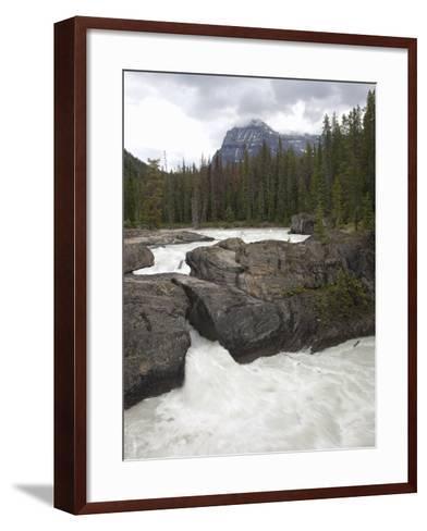 The Kicking Horse River Erodes a Natural Bridge in Limestone, Yoho National Park, Canada-Marli Miller-Framed Art Print