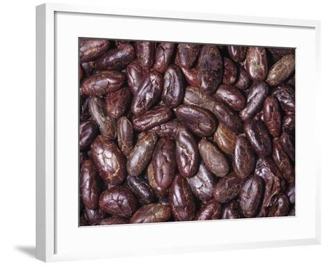 Raw, Whole Cacao Beans, the Source of Chocolate (Theobroma Cacao)Native to Tropical South America-Ken Lucas-Framed Art Print