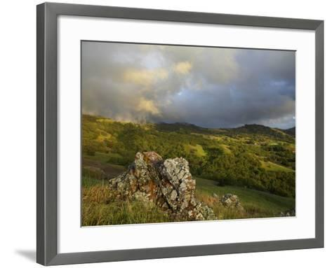 Mist on the Slope of Mt. Diablo After A Late Winter Storm, Central California, USA-Patrick Smith-Framed Art Print