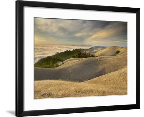 Fog over San Francisco Bay Seen from the Top of Mt. Tamalpais, California, USA-Patrick Smith-Framed Art Print