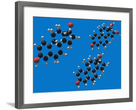 Molecular Models of the Estrogens: Estrone, Estriol and Estradiol-Carol & Mike Werner-Framed Art Print