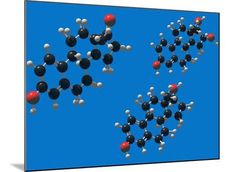 Molecular Models of the Estrogens: Estrone, Estriol and Estradiol-Carol & Mike Werner-Mounted Photographic Print