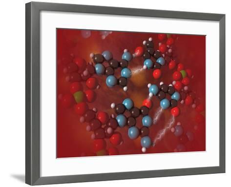Biomedical Illustration of Four Different Bases in DNA-Carol & Mike Werner-Framed Art Print