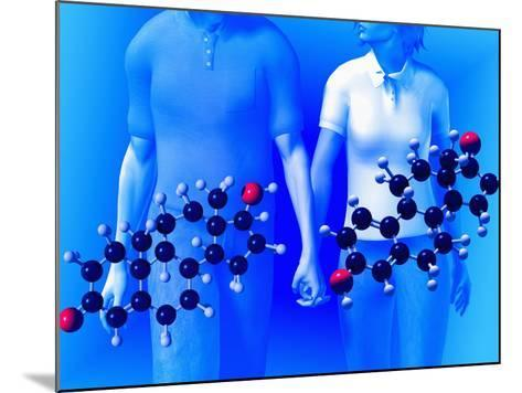 Molecular Models of the Hormones Testosterone (Left) and Estrogen (Right)-Carol & Mike Werner-Mounted Photographic Print
