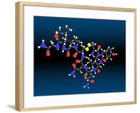 Oxytocin Molecule-Carol & Mike Werner-Framed Art Print
