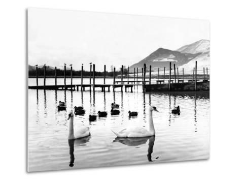 Lake District - Derwentwater 1965-Staff-Metal Print