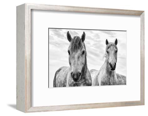 White Horses, Camargue, France-Nadia Isakova-Framed Art Print