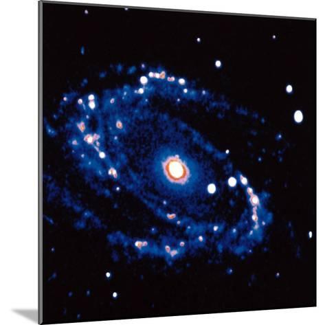 Spiral Galaxy M81 in Constallation of Ursa Minor--Mounted Photographic Print