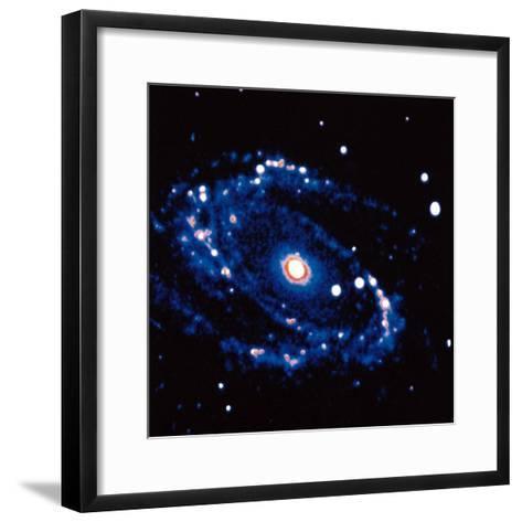 Spiral Galaxy M81 in Constallation of Ursa Minor--Framed Art Print