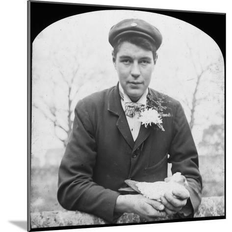 E Hack Holding a Pigeon, Late 19th or Early 20th Century--Mounted Photographic Print