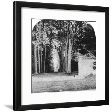 The Avenue, Guy's Cliff, Warwick, Early 20th Century--Framed Art Print