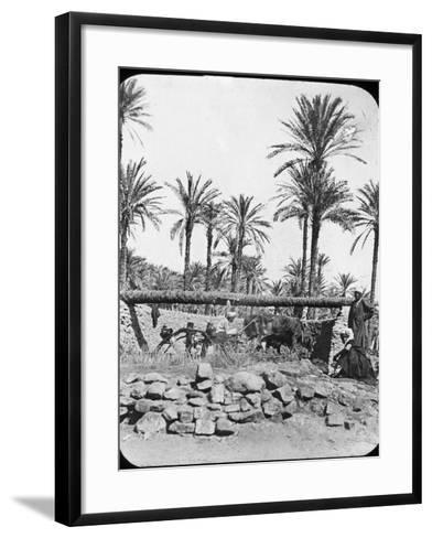 Water Wheel, Egypt, C1890-Newton & Co-Framed Art Print