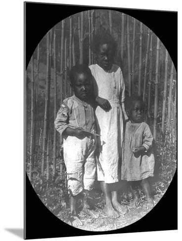 Children Near Petrópolis, Brazil, Late 19th or Early 20th Century--Mounted Photographic Print
