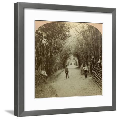 The Mardyke, Cork, Ireland-BW Kilburn-Framed Art Print