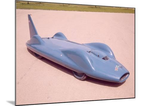 The 1961 Bluebird--Mounted Photographic Print