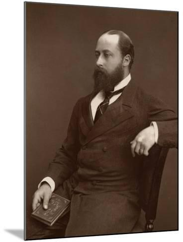 Hrh the Prince of Wales, 1876-Lock & Whitfield-Mounted Photographic Print