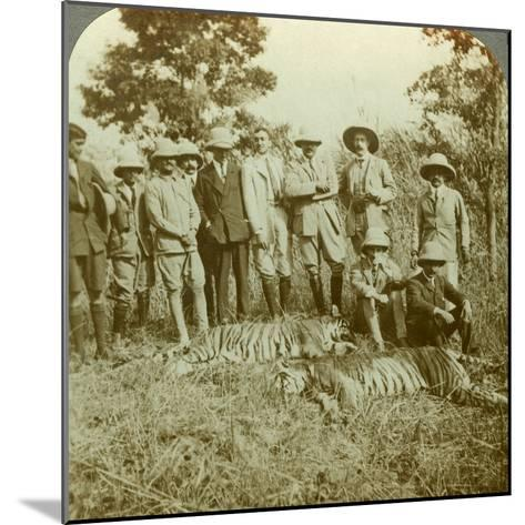Tiger Hunting, Cooch Behar, West Bengal, India, C1900s-Underwood & Underwood-Mounted Photographic Print