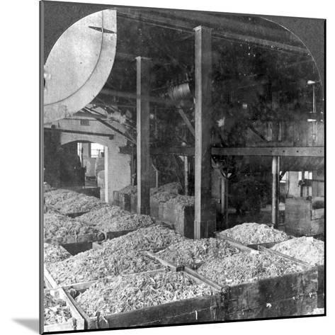 Making Paper from Rags, Holyoke, Massachusetts, USA, 20th Century--Mounted Photographic Print