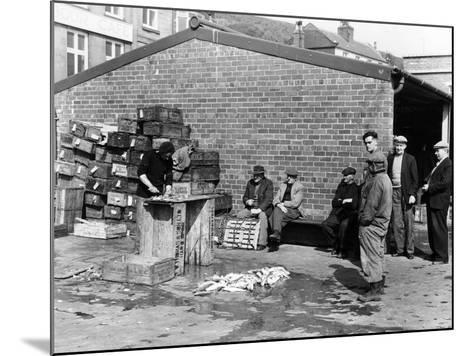 Gutting Fish Outside a Warehouse in Whitby, North Yorkshire, 1959--Mounted Photographic Print