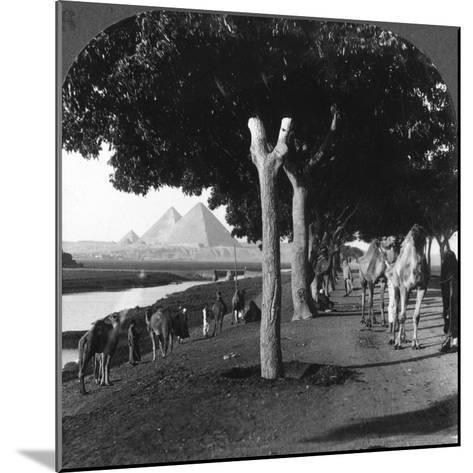 The Road to the Pyramids, Giza, Egypt, 1905-Underwood & Underwood-Mounted Photographic Print