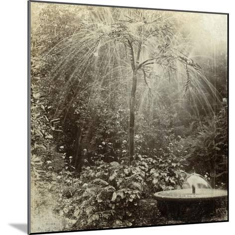 Willow Tree Fountain, Chatsworth, Derbyshire--Mounted Photographic Print
