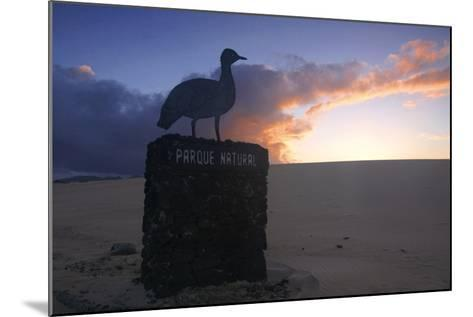 Dunes Natural Park, Fuerteventura, Canary Islands-Peter Thompson-Mounted Photographic Print