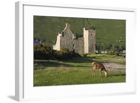 Lochranza Castle, Arran, North Ayrshire, Scotland-Peter Thompson-Framed Art Print