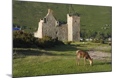 Lochranza Castle, Arran, North Ayrshire, Scotland-Peter Thompson-Mounted Photographic Print