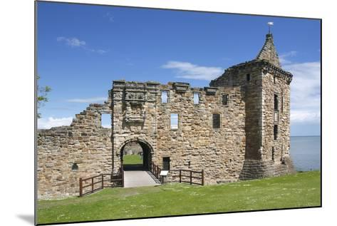 St Andrews Castle, Fife, Scotland, 2009-Peter Thompson-Mounted Photographic Print