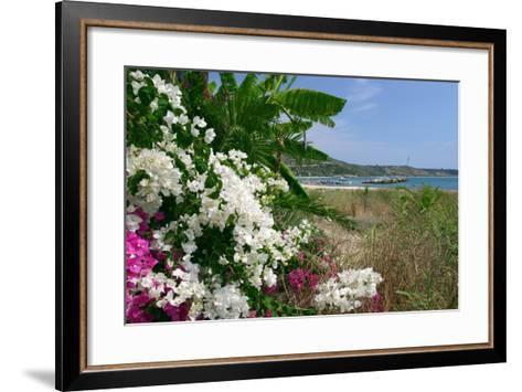 Flowering Shrubs and Palms, Katelios, Kefalonia, Greece-Peter Thompson-Framed Art Print