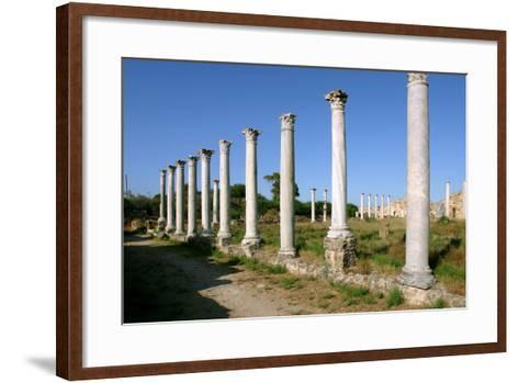 Roman Columns, Salamis, North Cyprus-Peter Thompson-Framed Art Print