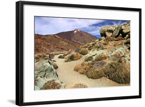 Mount Teide, Parque Nacional Del Teide, Tenerife, Canary Islands, 2007-Peter Thompson-Framed Art Print