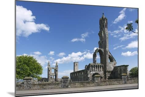 St Andrews Cathedral and St Rules Tower, Fife, Scotland, 2009-Peter Thompson-Mounted Photographic Print