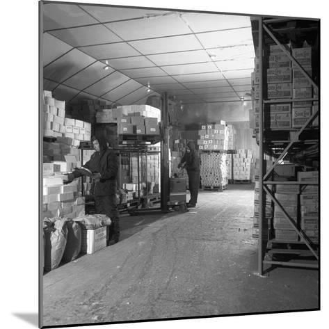 Workers in a Cold Store at Modern Foods, Mexborough, South Yorkshire, 1973-Michael Walters-Mounted Photographic Print