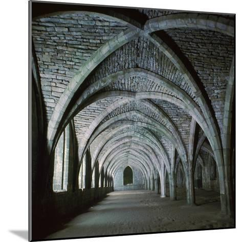 The Vaults in the Cellarium of Fountains Abbey, 12th Century-CM Dixon-Mounted Photographic Print