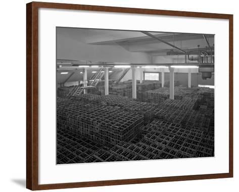 Warehouse Full of Crates of Bottles, Ward and Sons, Swinton, South Yorkshire, 1960-Michael Walters-Framed Art Print