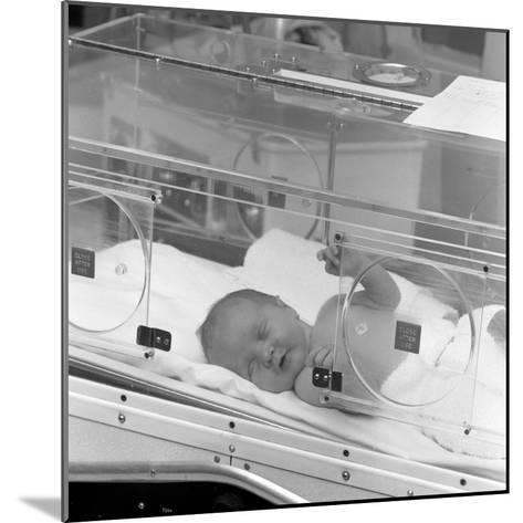Special Care Unit for Premature Babies, Nether Edge Hospital, Sheffield, South Yorkshire, 1969-Michael Walters-Mounted Photographic Print