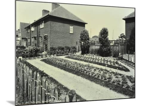 Garden at 187 Valence Wood Road, Becontree Estate, Ilford, London, 1929--Mounted Photographic Print