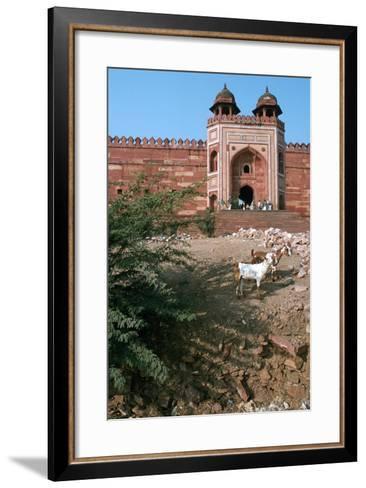 Buland Darwaza, Fatehpur Sikri, Agra, Uttar Pradesh, India-Vivienne Sharp-Framed Art Print